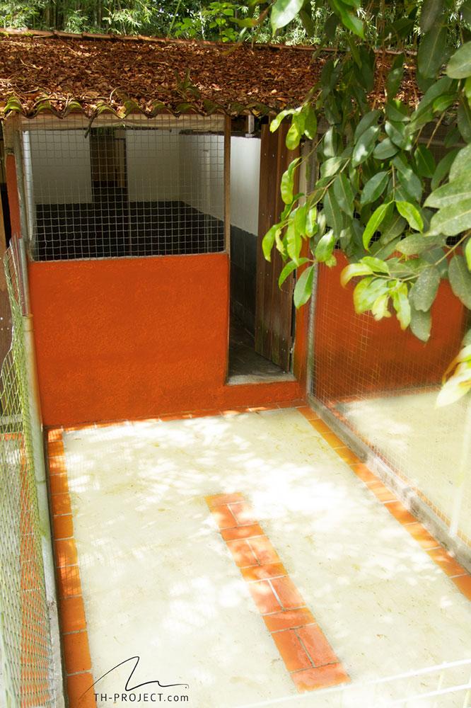 Canis do Tunghats Resort: Espaço Comfort