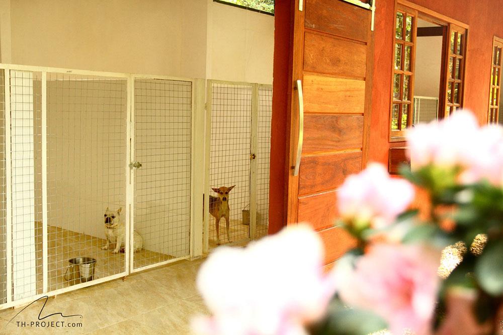 Canis do Tunghats Resort: Espaço Premium