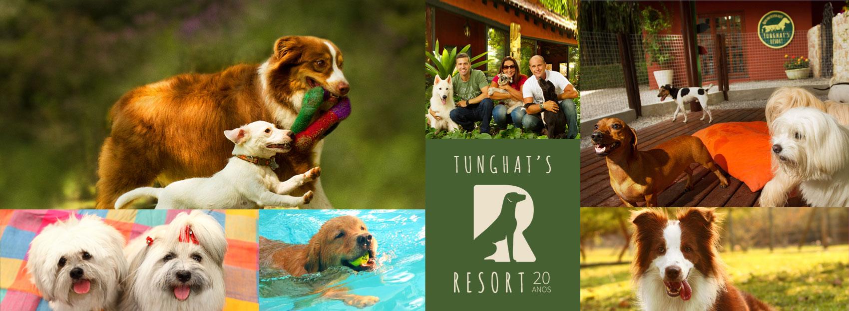 Tunghat's Resort: 20 Anos.