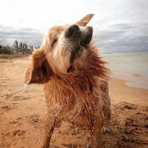 Imagem Autores Tunghats Resort