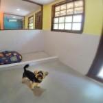 Canis do Tunghats Resort: Espaço Top