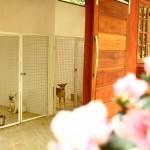 Canis do Tunghats Resort: Espaço Essential