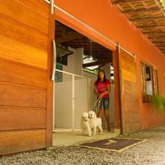 Galeria de Imagens de Estrutura: Estrutura com funcionários dedicados e canis espaçosos!