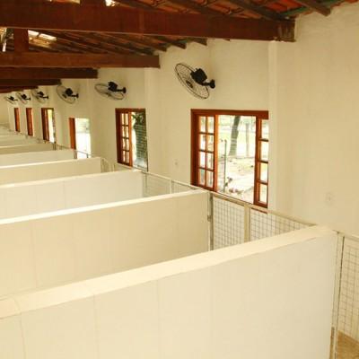 Galeria de Imagens: Estrutura no Tunghat's Resort